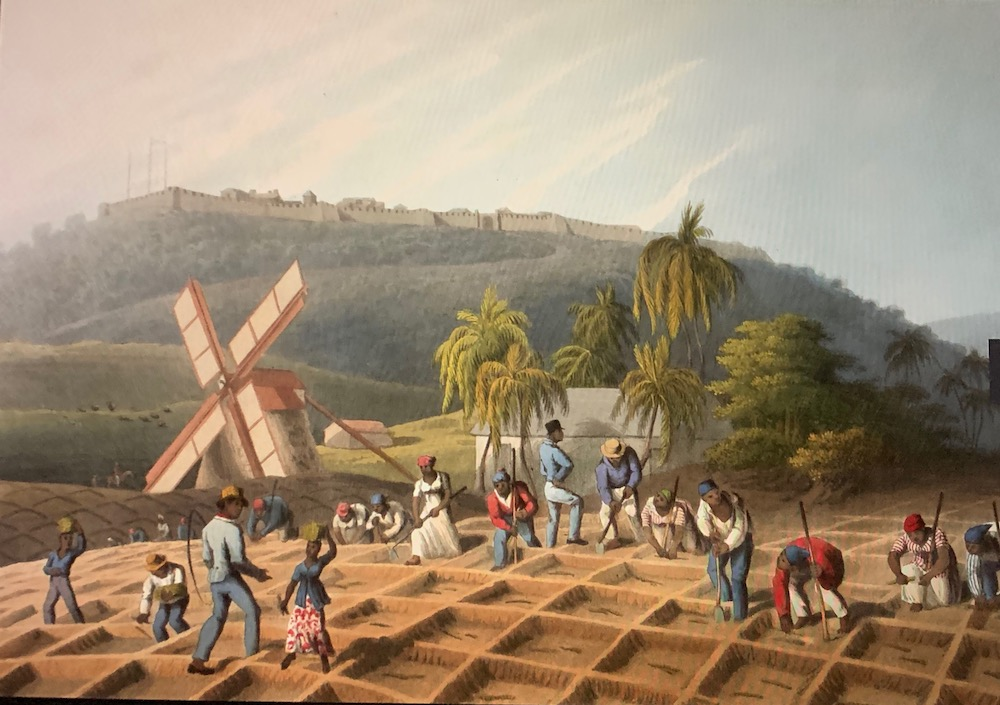 This image has an empty alt attribute; its file name is british-library-public-domain-1823-west-indies-sugar-plantation-william-clark-.jpg